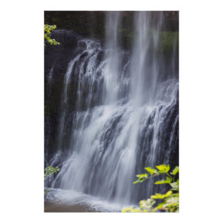 Silver Falls Willamette Valley Oregon Middle Falls Poster