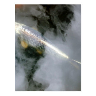 Silver Fish in Water and Clouds Postcard