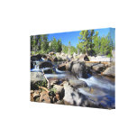 rapids, fishing, daytime scene, nature, forest,