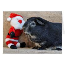 Silver Fox Guinea Pig and Santa Card