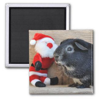 Silver Fox Guinea Pig and Santa Claus Magnet