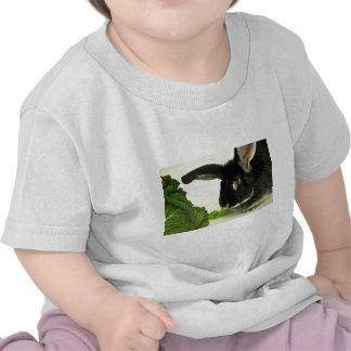 Silver Fox Rabbit Tee Shirt