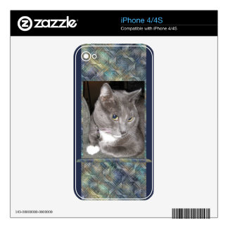 Silver Gray Cat iPhone 4 Decal