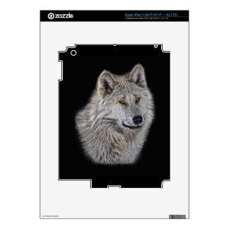 Silver Grey Wolf Wildlife Portrait iPad 3 Skins