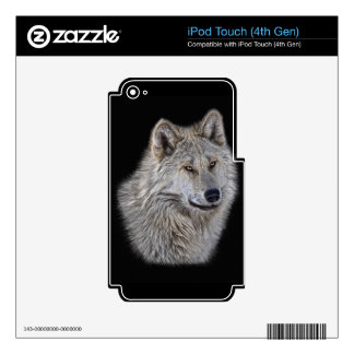 Silver Grey Wolf Wildlife Portrait iPod Touch 4G Skins