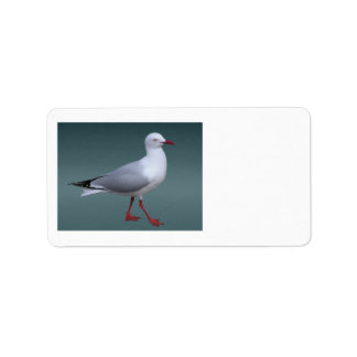 Silver Gull Labels
