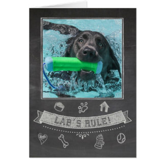 Silver Lab Chalkboard Birthday Card