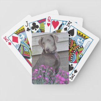 Silver Labradors Playing Cards