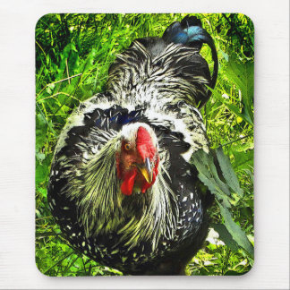 Silver Laced Wyandotte Rooster in Green Mousepad