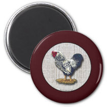 Silver Laced Wyandotte Roosters Barnboards Magnet