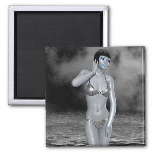 Silver Lake Magnet