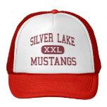 Silver Lake - Mustangs - High - Roseland Nebraska Mesh Hat