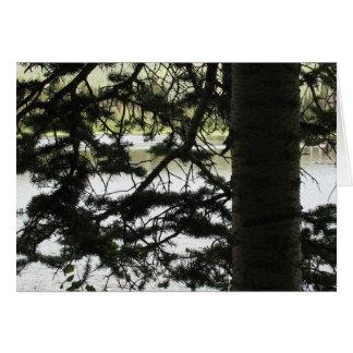 Silver Lake Through Pine Branches Card