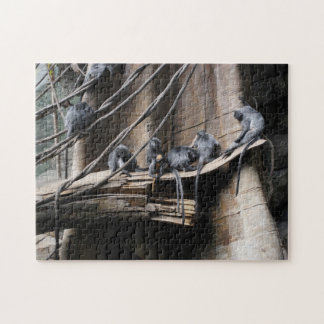Silver Langur Monkey Troop with Baby puzzle