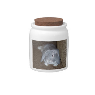 Silver Lop-Eared Bunny Rabbit Candy Jar