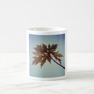 Silver maple coffee mug