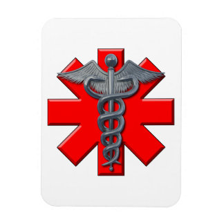 Silver Medical Profession Symbol Rectangular Magnets