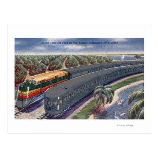 "Silver Meteors ""Seaboard"" in Florida Highlands Postcard"