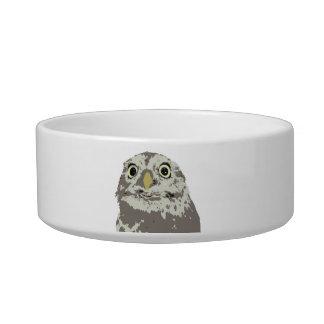 Silver Owl Pet Bowl