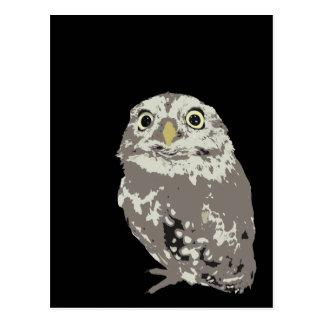 Silver Owl Postcard