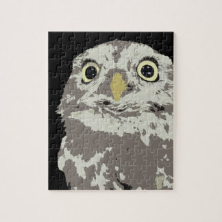 Silver Owl Puzzle