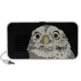 Silver Owl Speaker