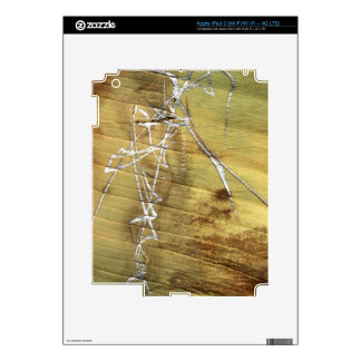 Silver-painted elephant skin decals for iPad 3