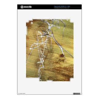 Silver-painted elephant skin skin for iPad 2