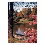 Silver Park in the Fall Greeting Cards