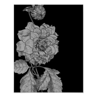 Silver Peony Flower On Black Floral Art Poster