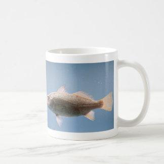 Silver Perch Fish Coffee Mug
