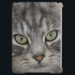 """Silver Persian Cat Face iPad Air Case<br><div class=""""desc"""">Silver Persian Cat Face-A close up photo of a silver long haired cat called Shadow,  who belongs to a family that my daughter cat sits for. He is just the softest,  most gorgeous creature with mesmerising eyes!</div>"""