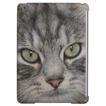Silver Persian Cat Face iPad Air Case