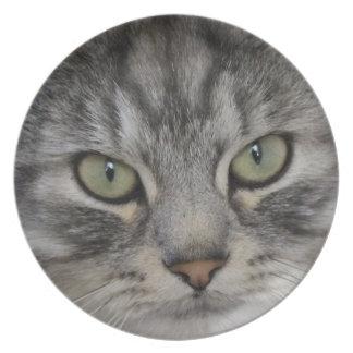 Silver Persian Cat Face Melamine Plate