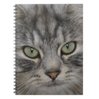 Silver Persian Cat Face Notebook 80 pages