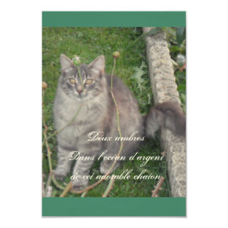 Silver plated kitten card