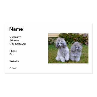 Silver Poodle Business Cards