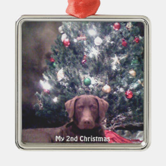 Silver Puppy My 2nd Christmas Photo Ornaments