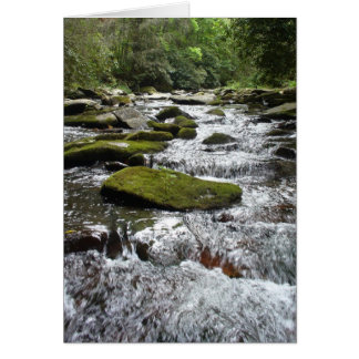 Silver Rapids Stationery Note Card
