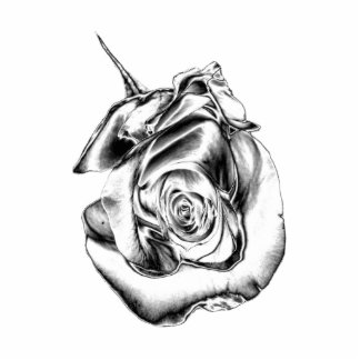 Silver Rose Bud Photo Sculptures