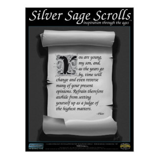 Silver Sage Scrolls™ 006: Plato; Patience Poster