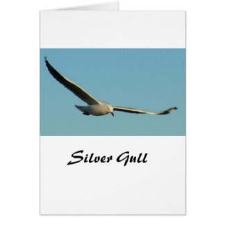 Silver Seagull Stationery Note Card