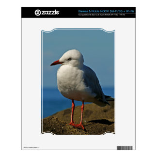 Silver Seagull Decal For NOOK