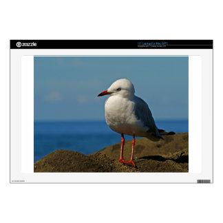 "Silver Seagull 17"" Laptop Skin"