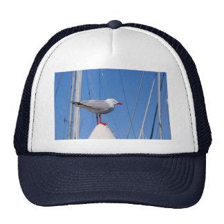Silver Seagull Trucker Hat