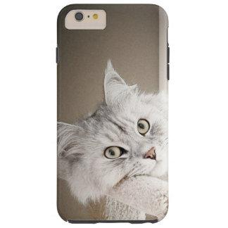 Silver Sensation iPhone 6 Plus Case