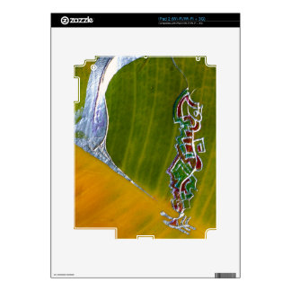 Silver snake & jewels on banana leaf iPad 2 skins