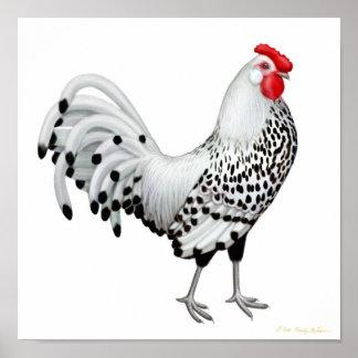 Silver Spangled Hamburg Rooster Print