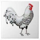 "Silver Spangled Hamburg Rooster Tile<br><div class=""desc"">Original fine art painting of a Silver Spangled Hamburg rooster by artist Carolyn McFann of Two Purring Cats Studio on a quality ceramic tile for poultry fans.</div>"