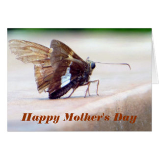Silver Spotted Butterfly Happy Mother's Day Card